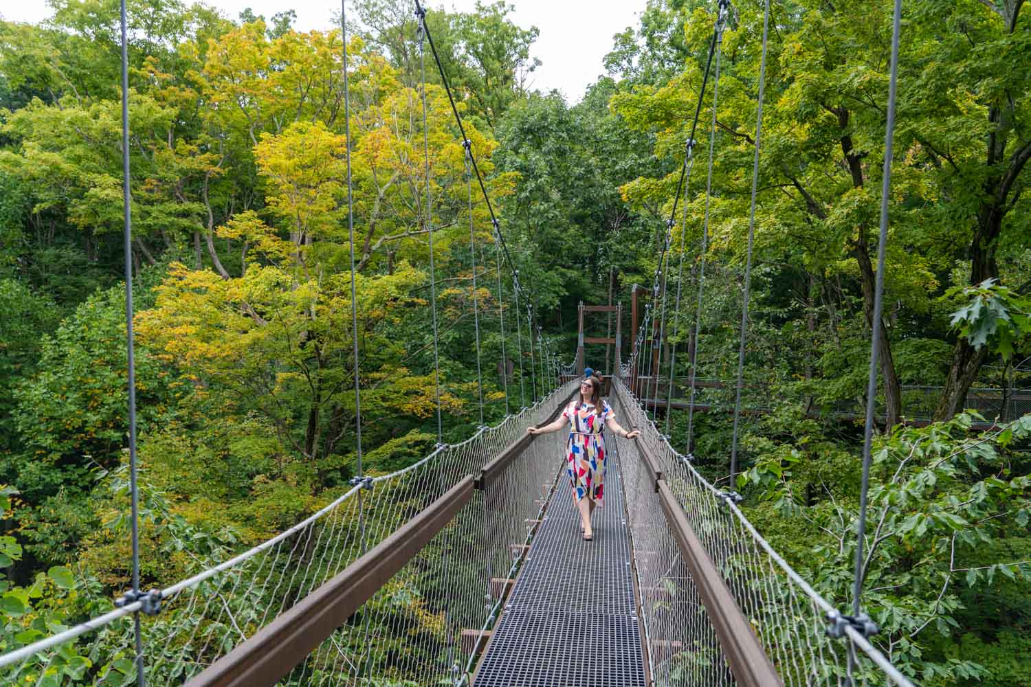 5 Things to Do When You Visit the Holden Arboretum