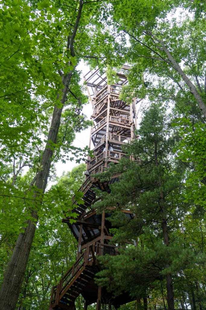 Emergent Tower at Holden Arboretum