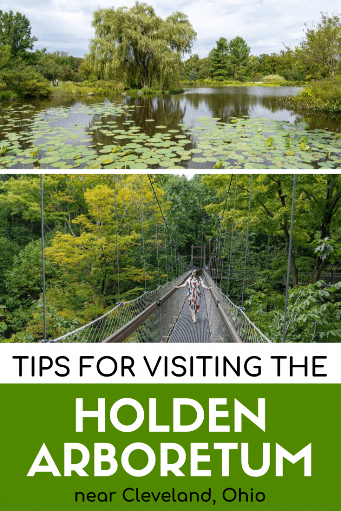 Tips for visiting the Holden Arboretum