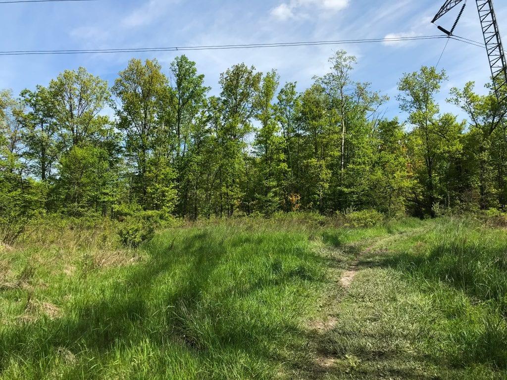 Buckeye Trail Near Cleveland