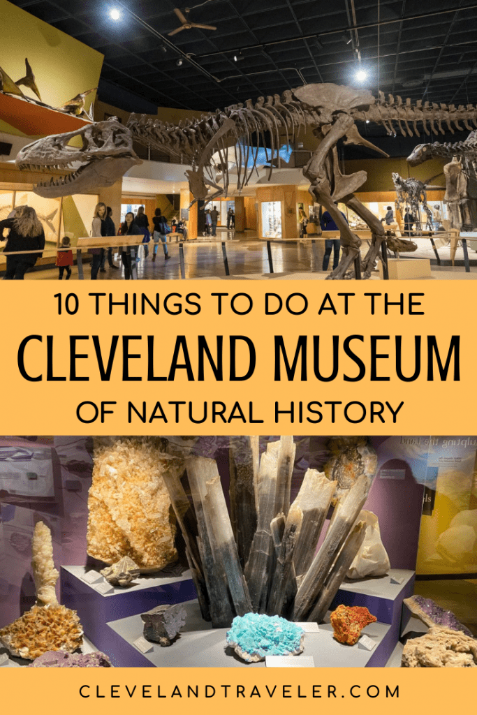 Things to do at the Cleveland Museum of Natural History