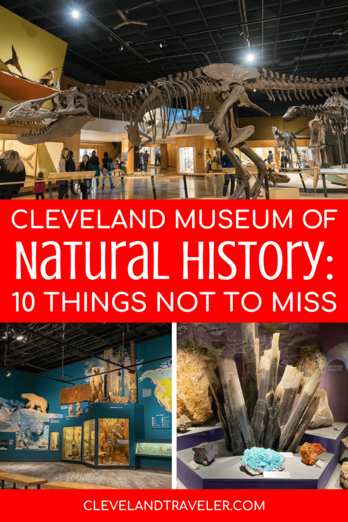 Cleveland Museum of Natural History guide