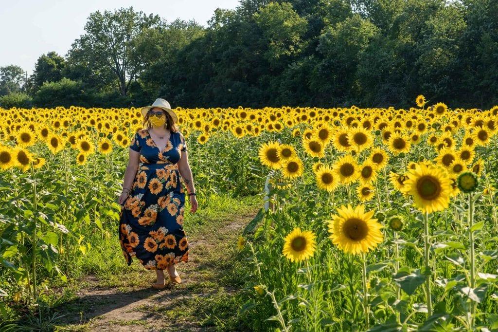 Amanda walking through sunflowers