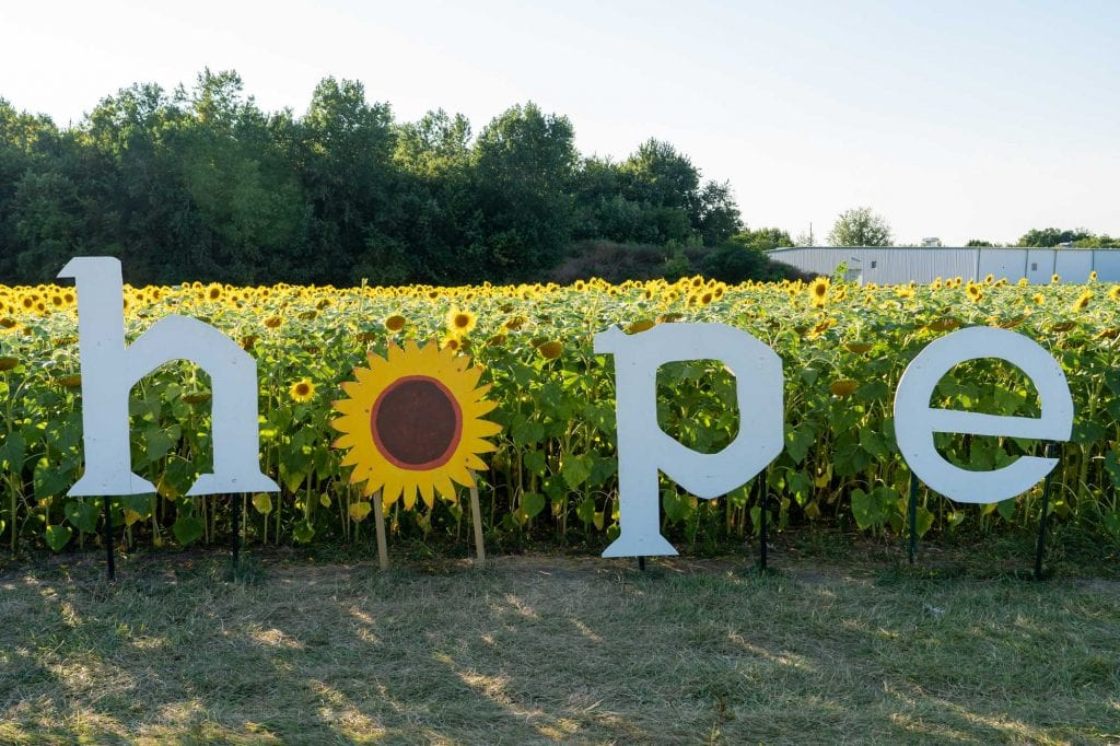 Maria's Field of Hope Cedar Point