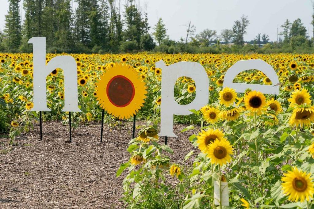 Maria's Field of Hope in Avon