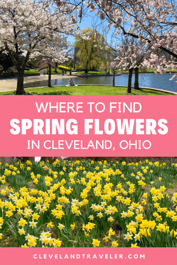Where to see spring flowers in Cleveland