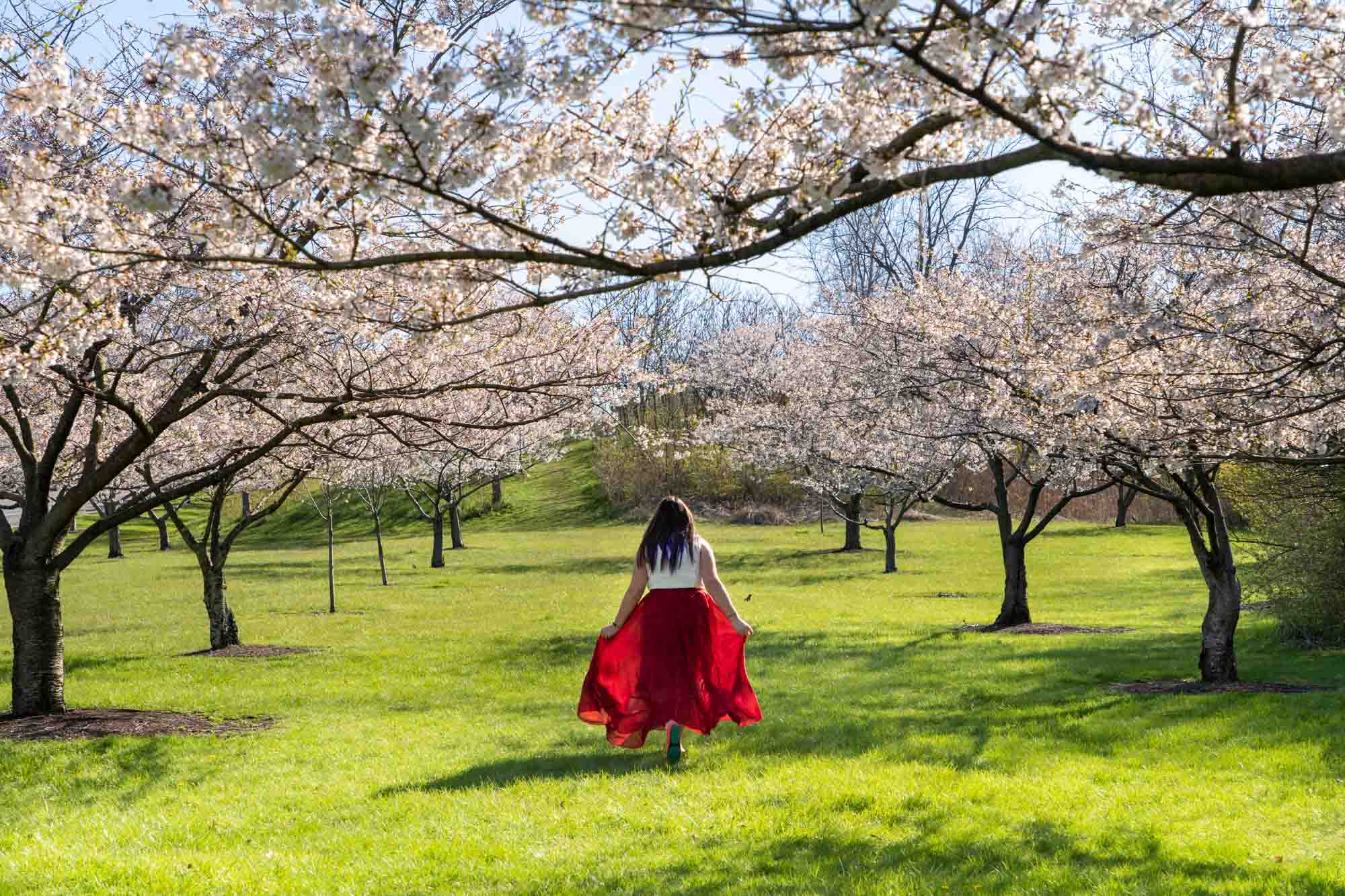 The 10 Best Places to See Spring Flowers in Cleveland